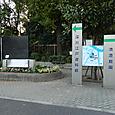 清澄白河駅前・花壇